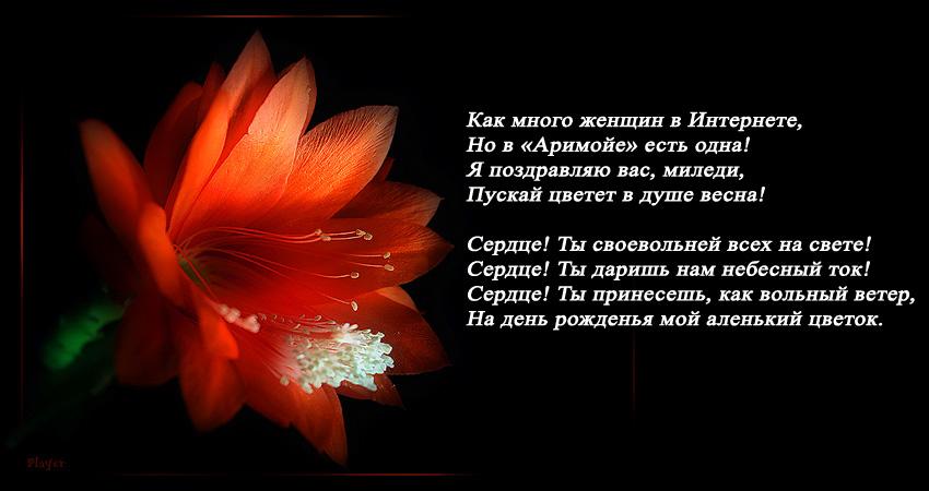 Аленький цветок .jpg