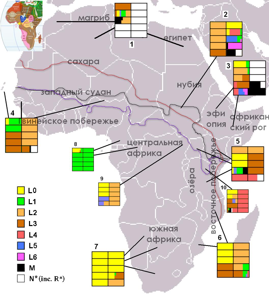 Копия Macrohaplogrupo_L_en_africa.png