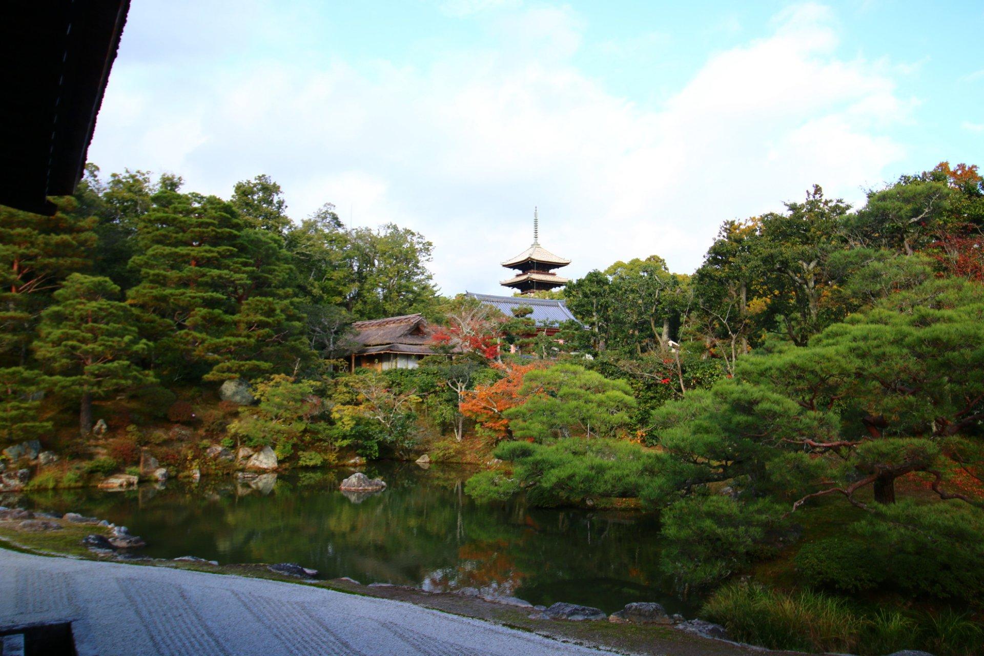 Нинна-дзи_Киото11.jpg