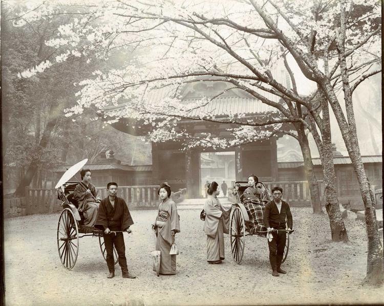 Поездка в храм Шеба, Токио.jpg