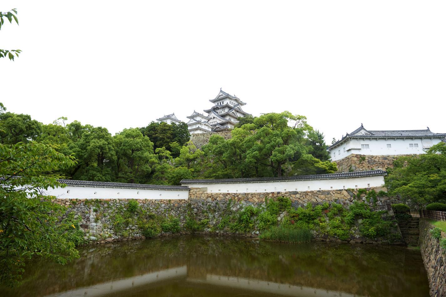 Сад замка (6).jpg
