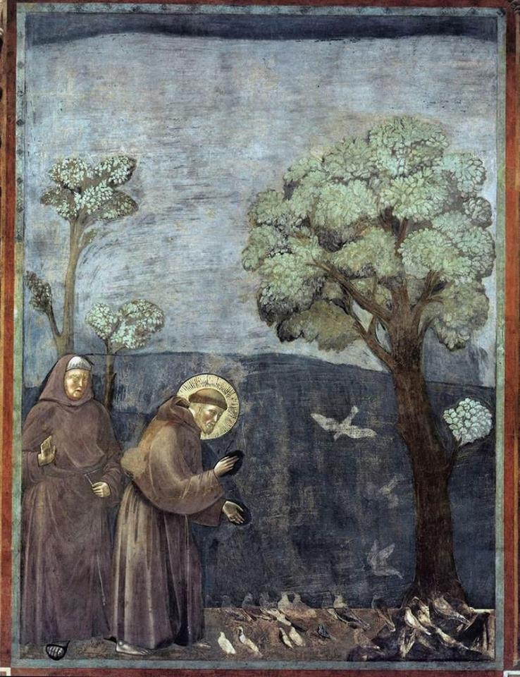 Франциск.jpg
