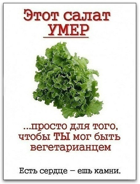антивегетарианство-приколы-про-вегетарианство-61265.jpeg