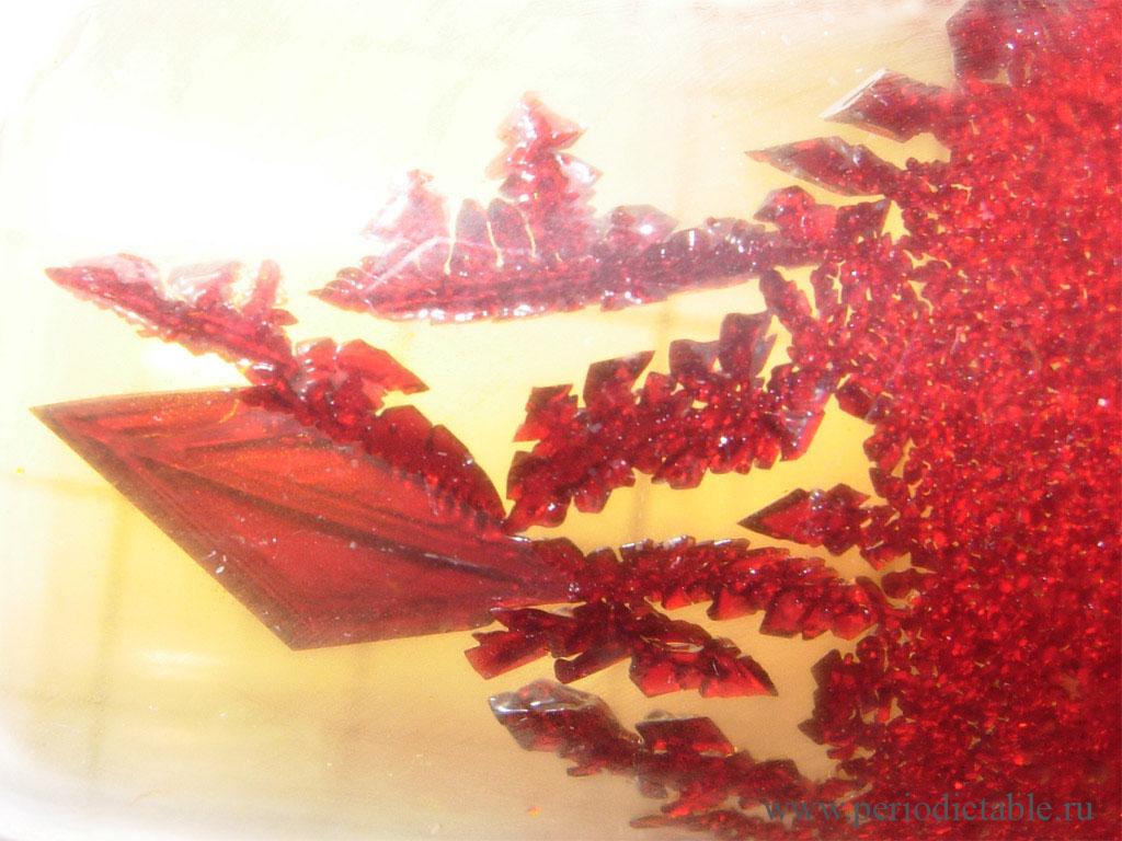 бром-кристаллы.jpg
