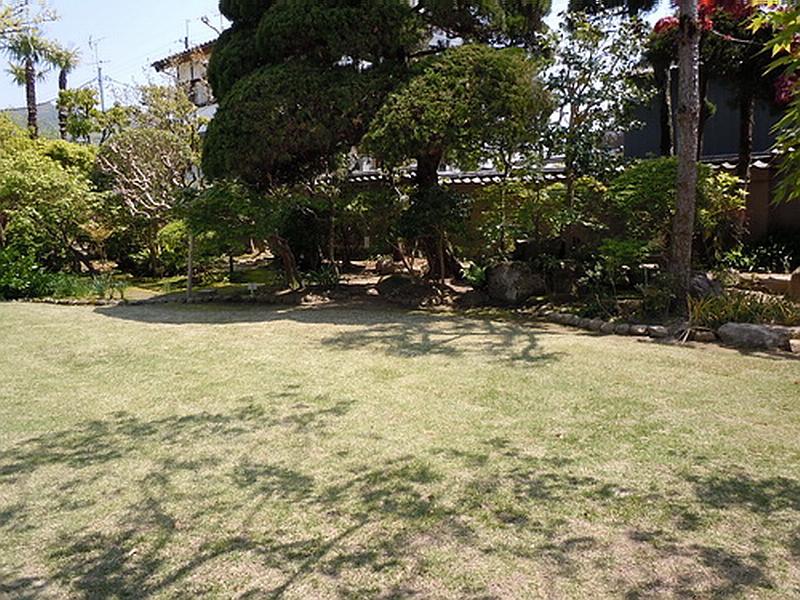 газон 2.jpg