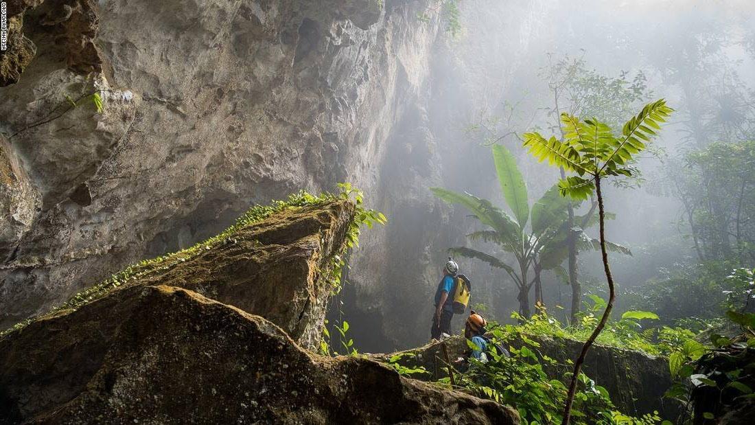 джунгли-в-пещере-Шондонг.jpg