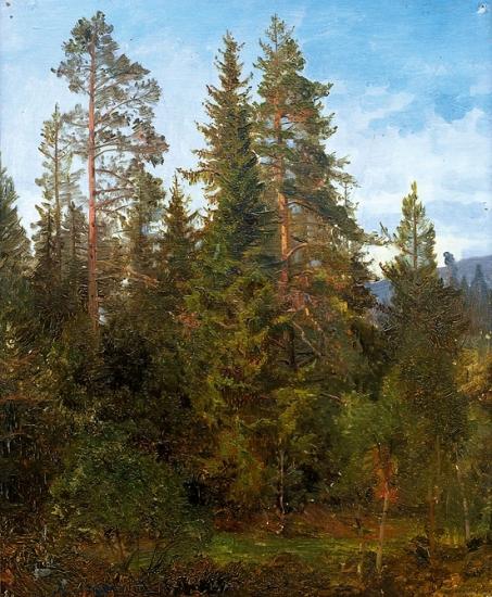 н.Anders_Askevold-Skogsstudie_fra_Eide_1868.jpg