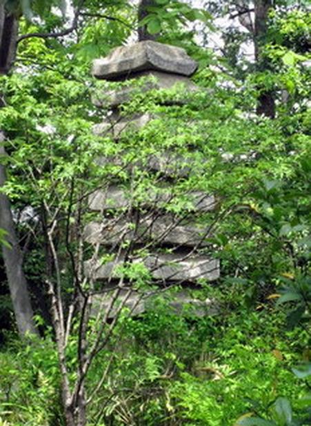 пагода.jpg