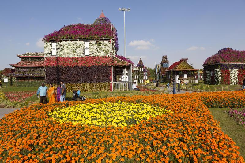 парк-цветка-в-дубай-са-чу-а-дубай-арабские-сое-иненные-эмираты-48718573.jpg