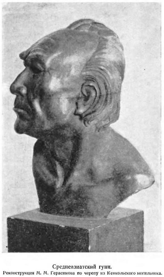 среднеазиатский гуееbernshtam-an-1951-112-113.jpg