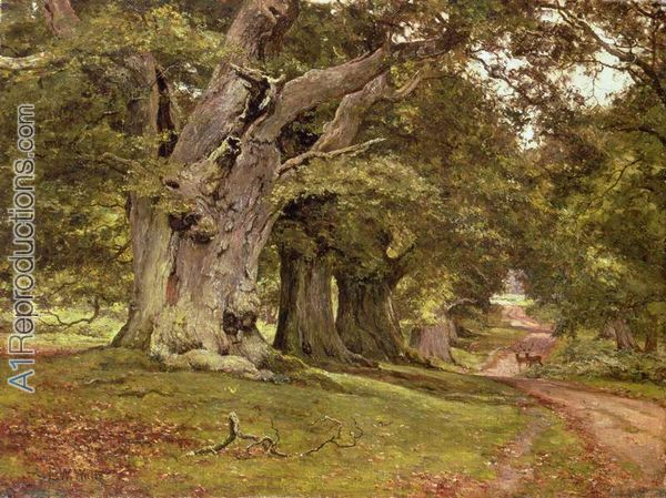уэйтthe-oak-s-massive-trunk-aldermaston-park-berkshire-1912-by-edward-wilkins-waite.jpg