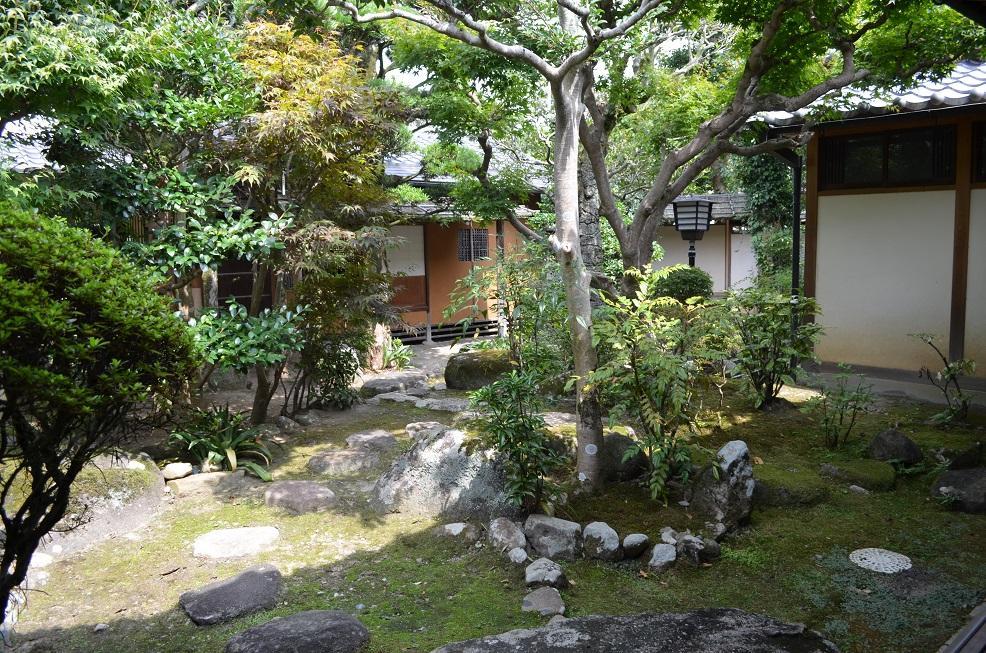 чайный сад.JPG