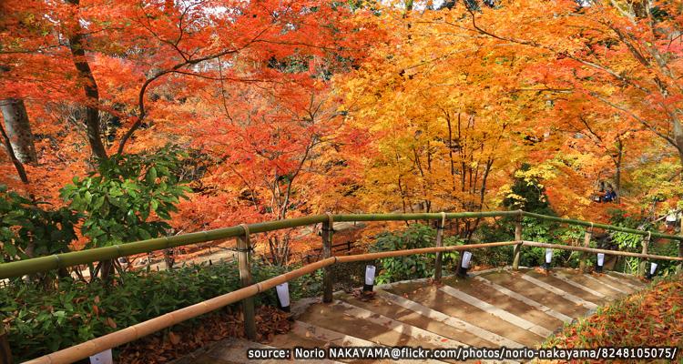 ศาลเจ้าคิตาโน่เทนมานกุ-Kitano-Tenmangu-Shrine3.jpg
