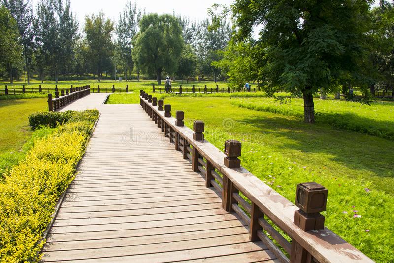 亚-中国,北京,奥林匹克森林公园,风景architectureï-œwooden足迹-77341666.jpg
