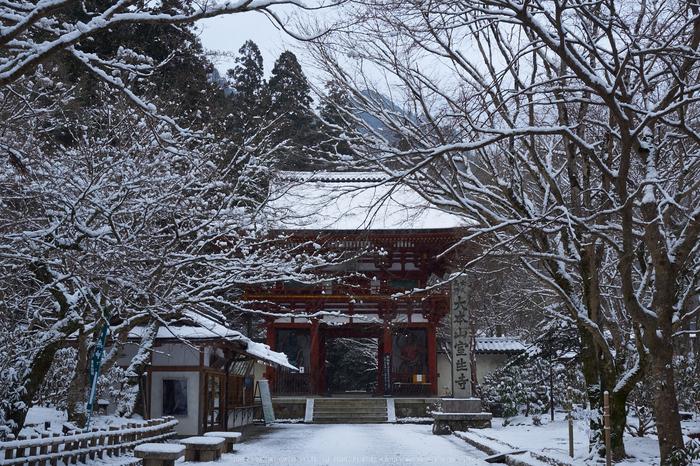 奈良,室生寺,雪景(EM100047,20 mm,F7.1)2016yaotomi-thumb-700xauto-69924.jpg
