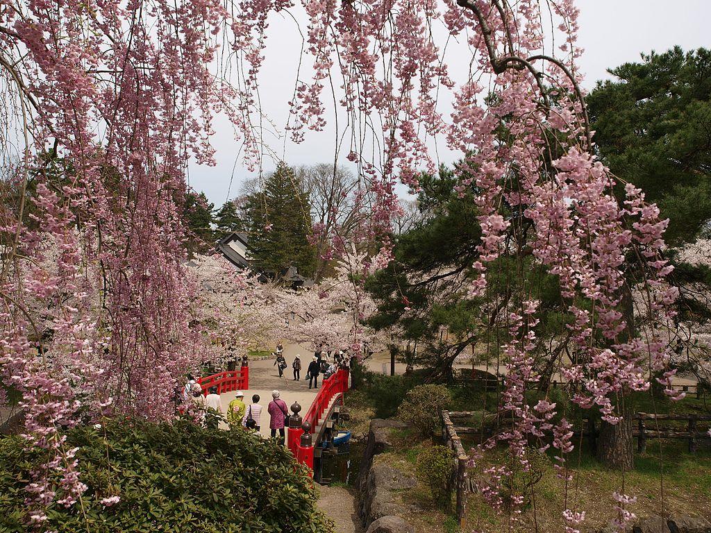 弘前城_ мHirosaki_castle_,_Aomori_-_panoramio.jpg