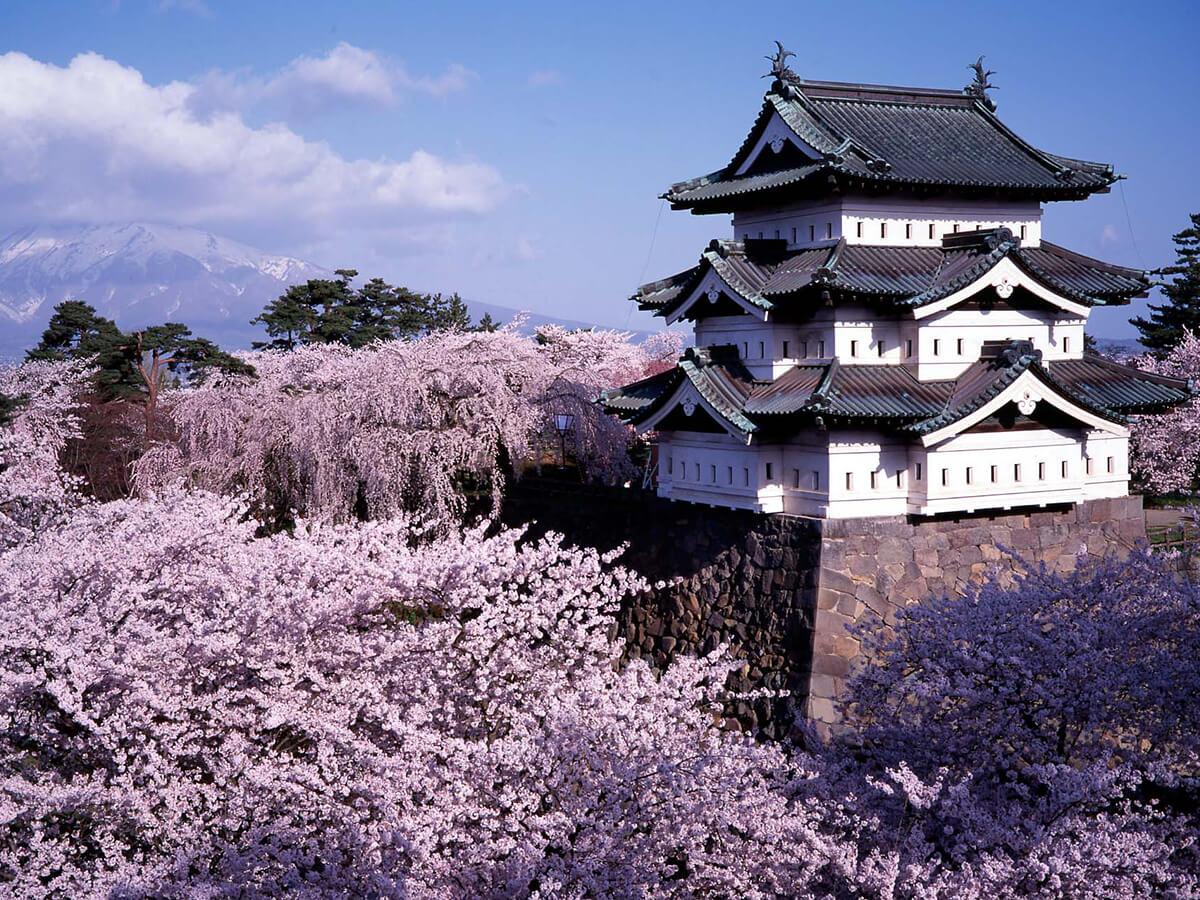 弘前城_ хиросаки ao-m04-01.jpg