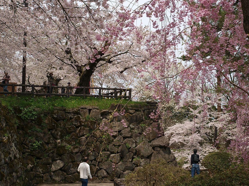 弘前城_Hirosaki_castle_,_Aomori_-_panoramio_(1).jpg