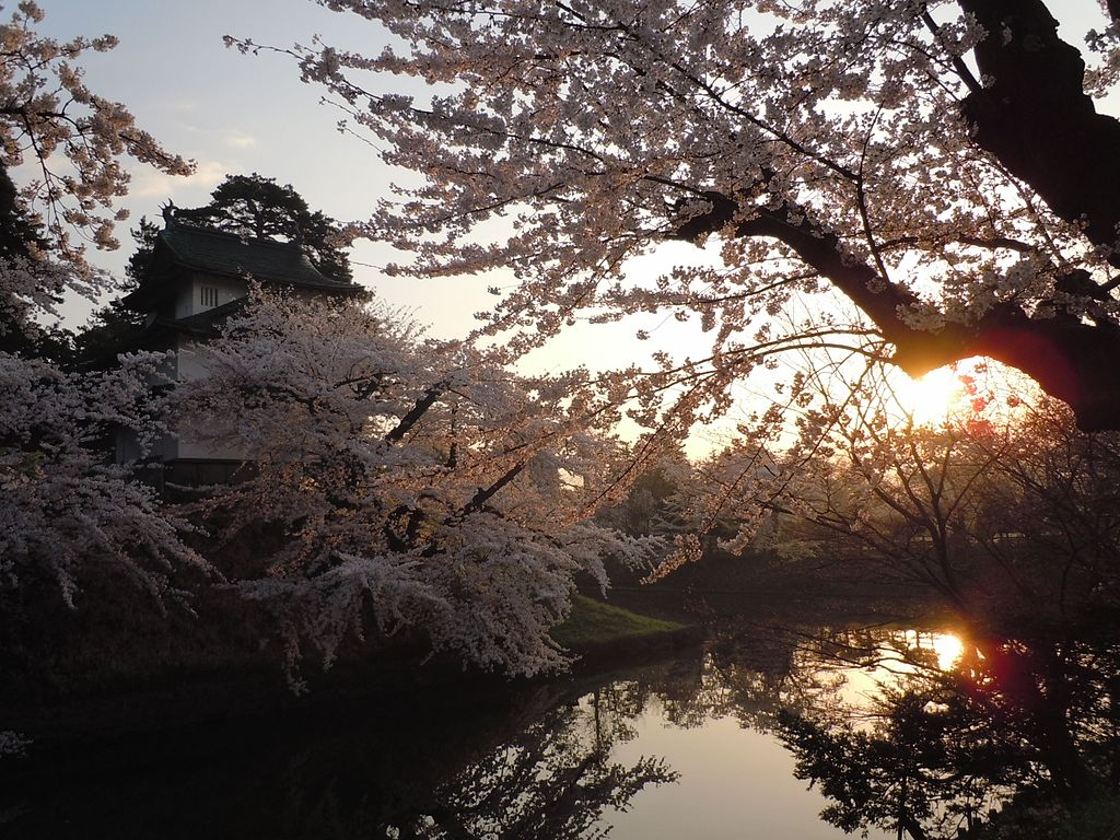 弘前城_Hirosaki_Park_(during_the_sakura)_-_panoramio_(5).jpg