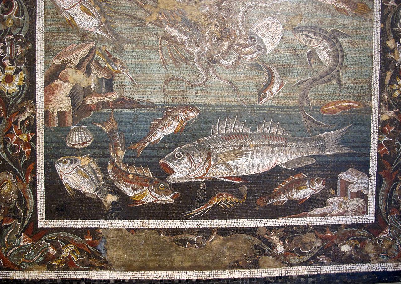 100 доMarina_con_pesci,_da_casa_del_fauno_a_pompei,_9997,_03.JPG