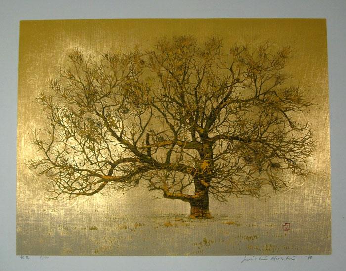 1020_hoshi_autumn_tree.jpg