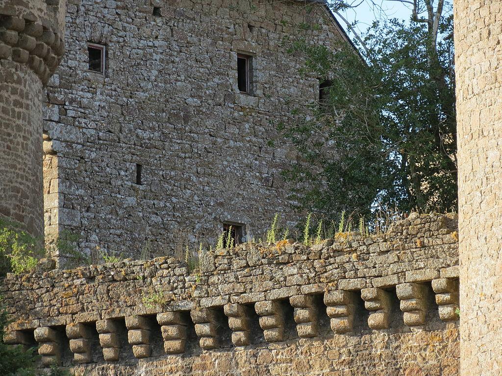 1024px-Château_de_Lassay_14.JPG