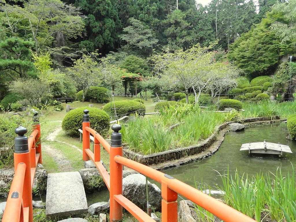 1024px-Iris_garden_-_Ishiyamadera_-_Otsu,_Shiga_-_DSC07448.JPG