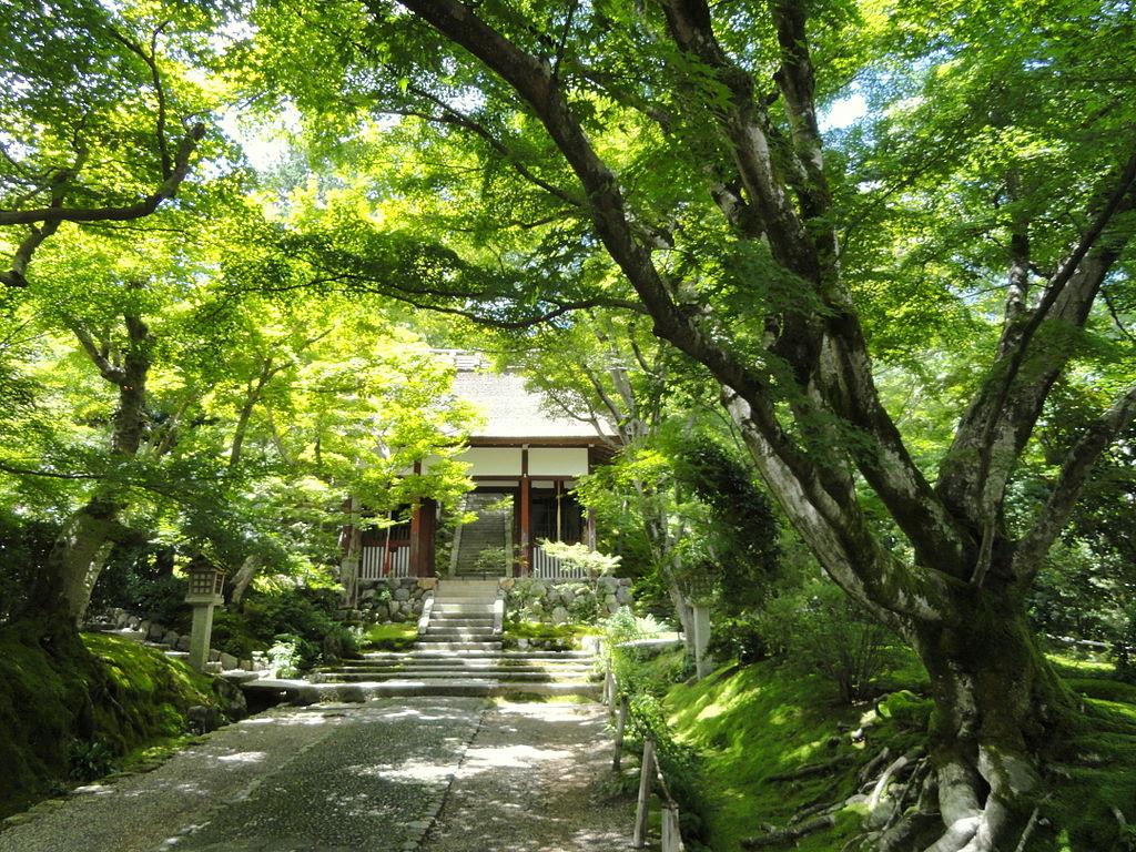 1024px-Jojakkoji_-_Kyoto_-_DSC06138.JPG