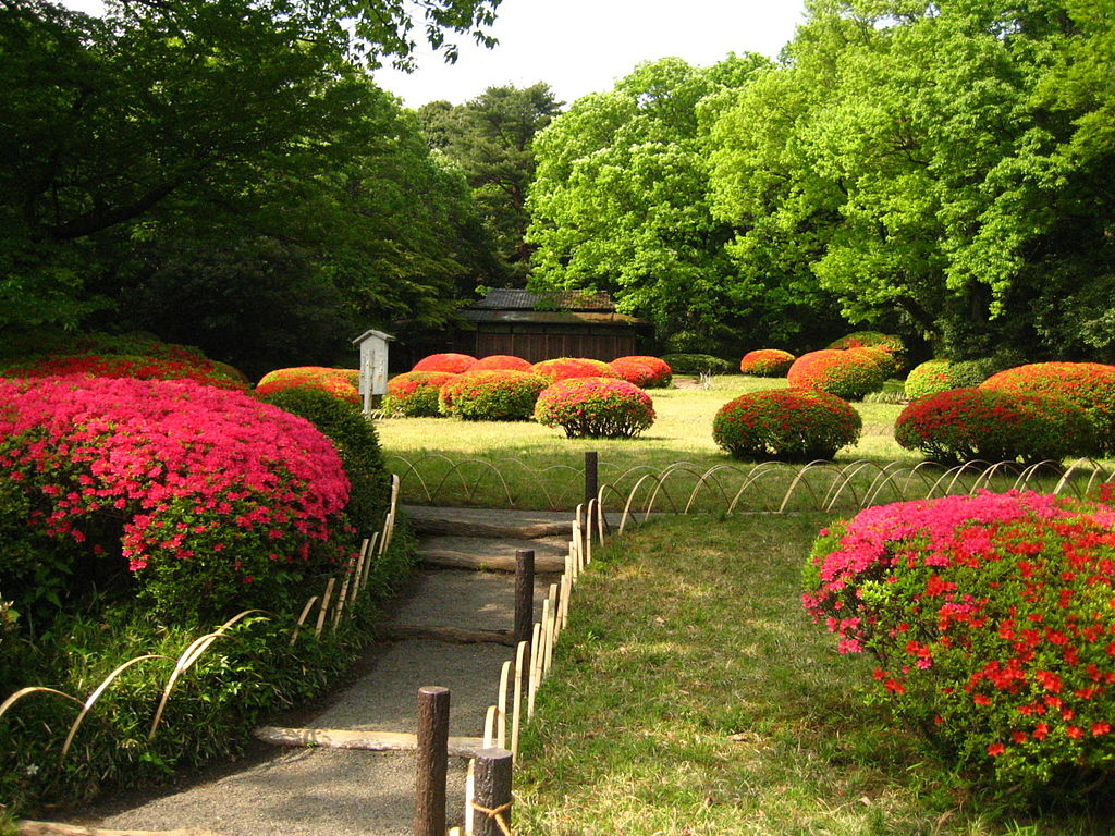1024px-Meiji_Shrine_Inner_Garden.JPG