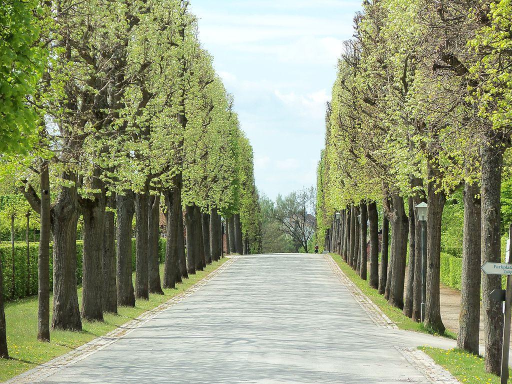 1024px-Parc_Eremitage_Bayreuth.JPG