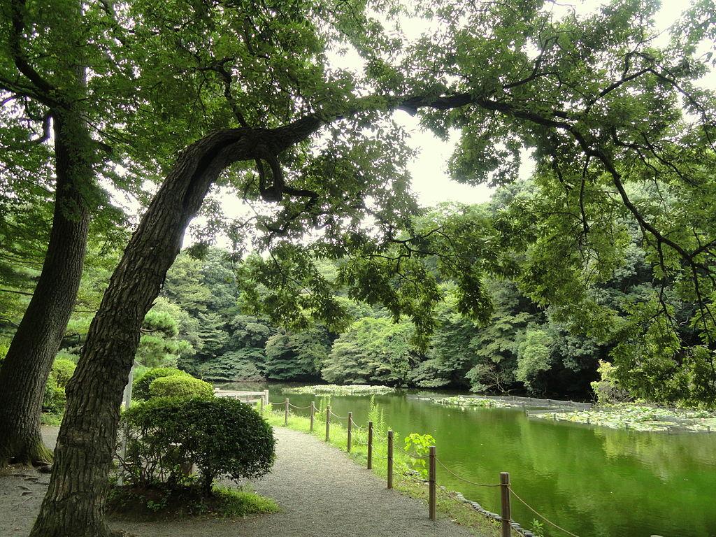 1024px-Pond_-_Meiji_Shrine_Inner_Garden_-_DSC04923.JPG