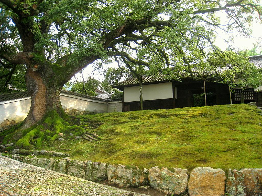 1024px-Shōren-in,_Kyoto_-_IMG_4981.JPG