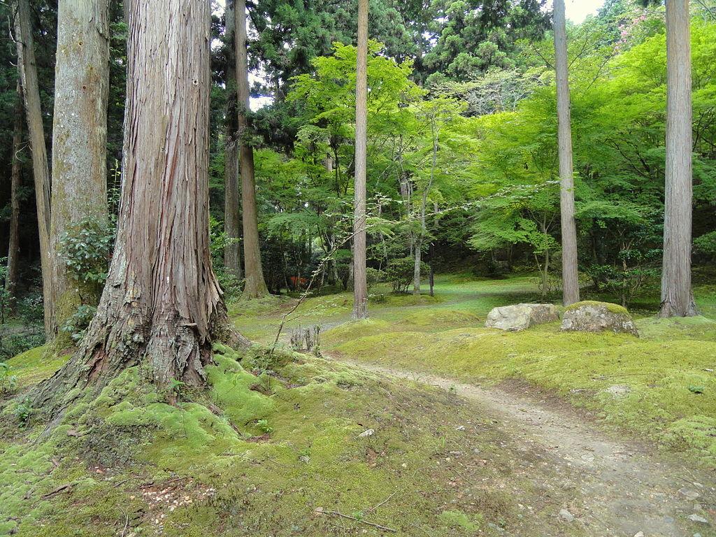 1024px-Walkway_-_Ishiyamadera_-_Otsu,_Shiga_-_DSC07439.JPG