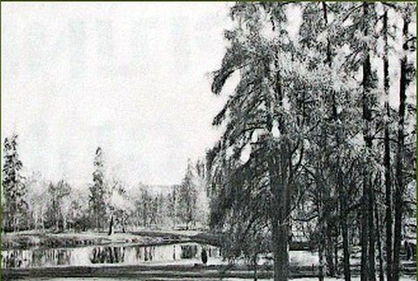 116.Сад (2005 г.).jpg