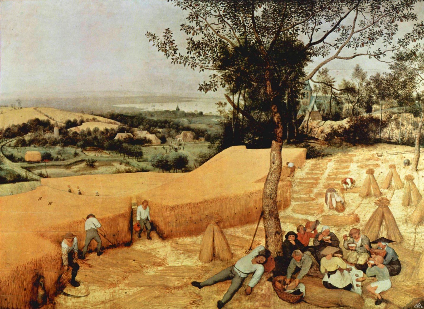 1225643949_uborka-zerna-1565-muzejj-metropoliten-nju-jjork1.jpg