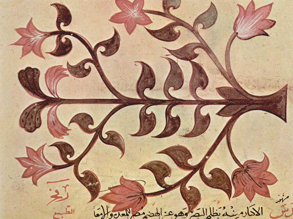 1229Arabischer_Maler_des_Kräuterbuchs_des_Dioskurides_002.jpg