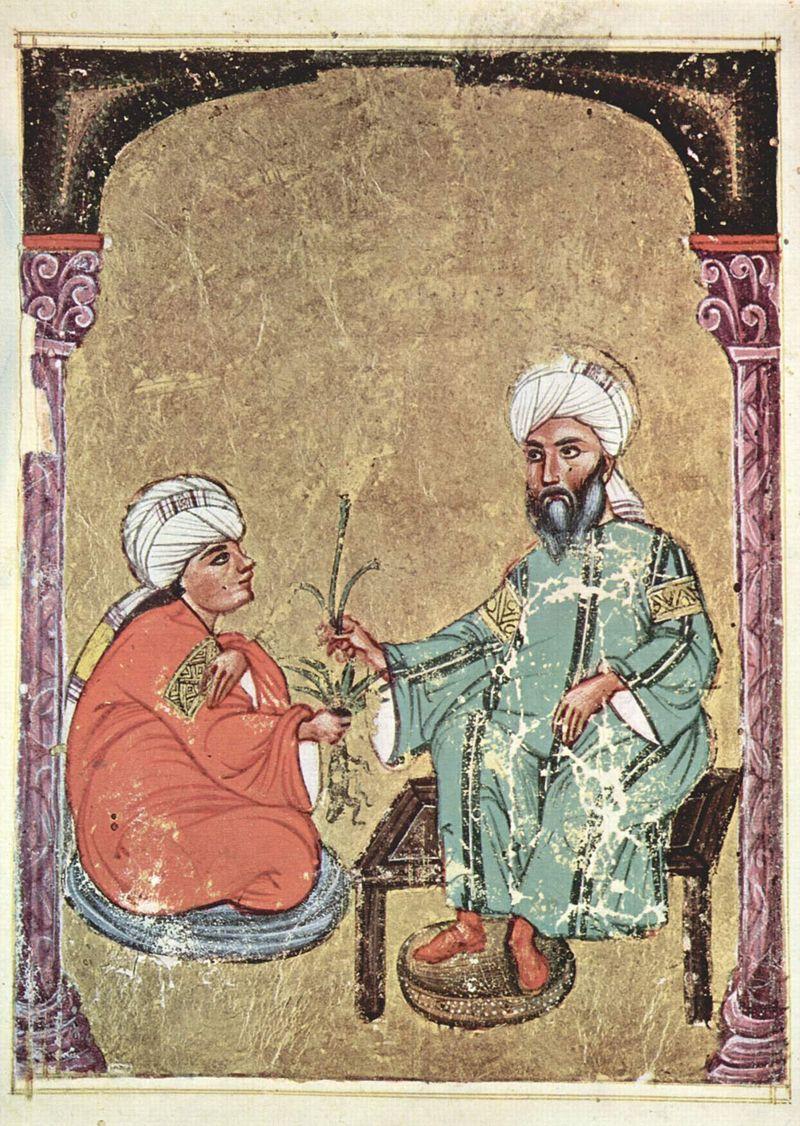 1229x-Arabischer_Maler_des_Kräuterbuchs_des_Dioskurides_004.jpg