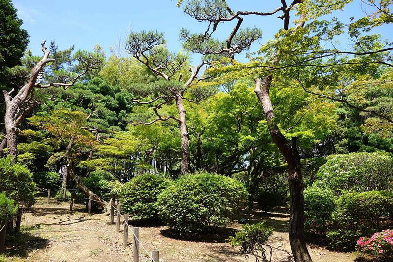 125.Имение семьи Мацумото.Сад.jpg