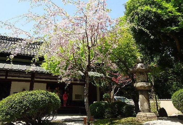 127.Имение семьи Мацумото.Внутренний сад Японского дома.jpg