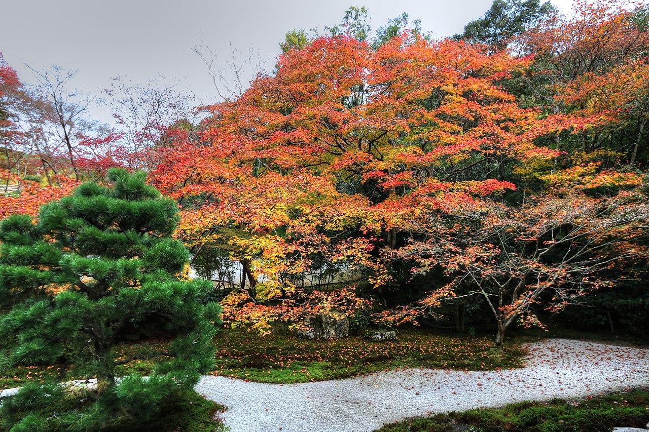 1280px-南禅寺天授庵_-_panoramio_(2).jpg