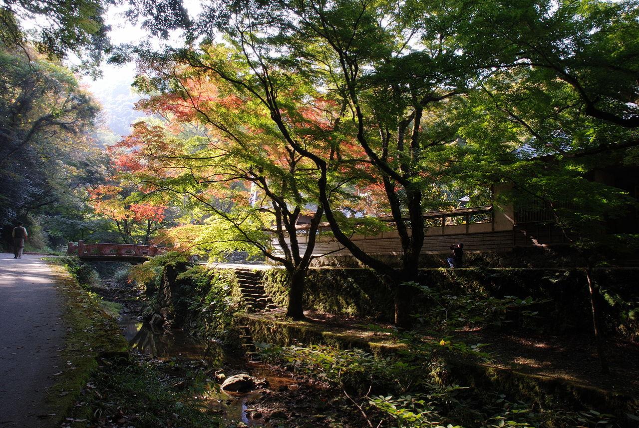 1280px-Gakuenji_temple.JPG
