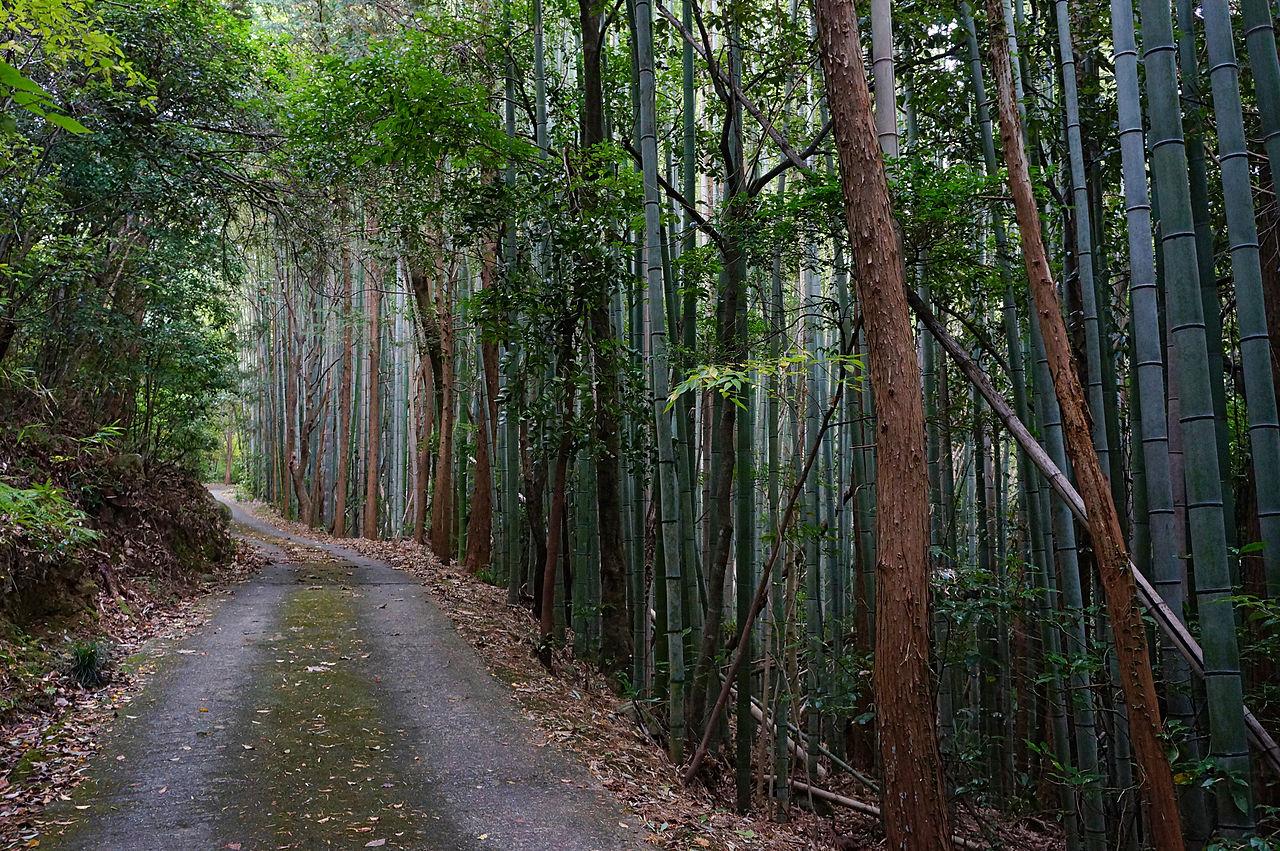 1280px-Kuwanomi-dera_Azuchi_Shiga_pref_Japan00n.jpg