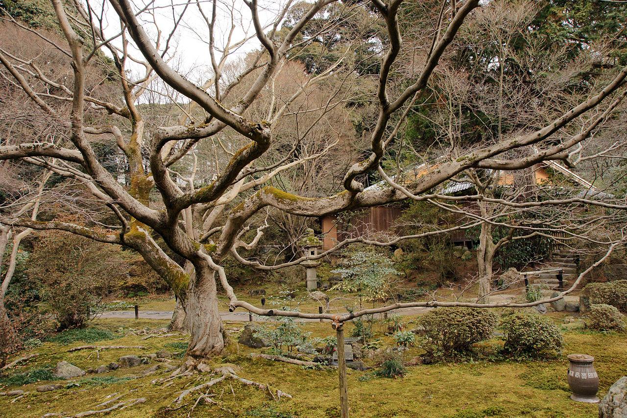 1280px-Kyoto_Shorenin08n4272.jpg