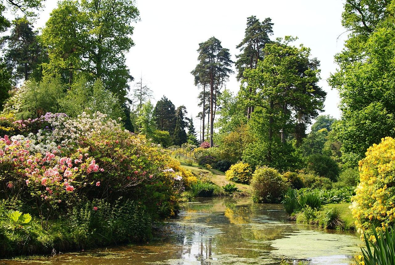 1280px-Leonardslee_Gardens,_Sussex_(3)_(geograph_1906421).jpg