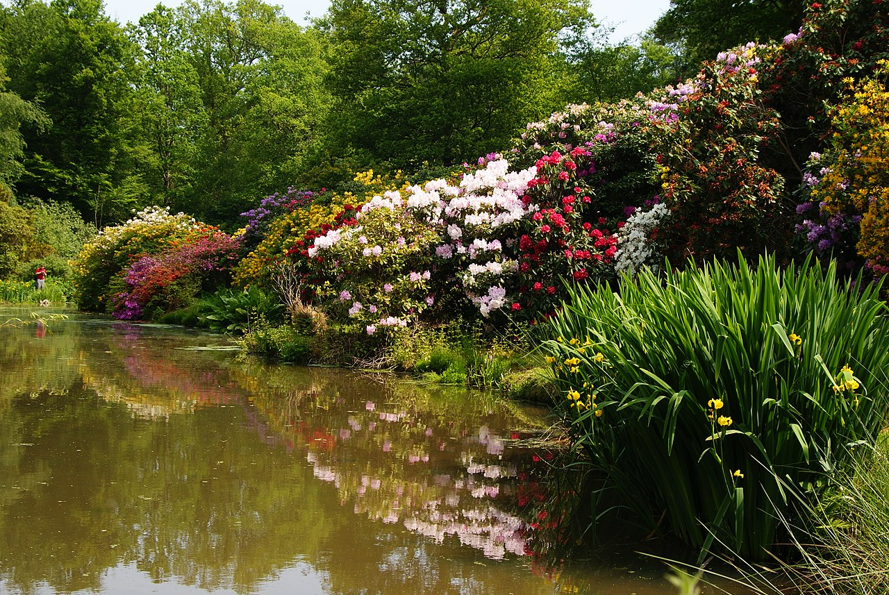 1280px-Leonardslee_Gardens,_Sussex_(4)_(geograph_1906434).jpg