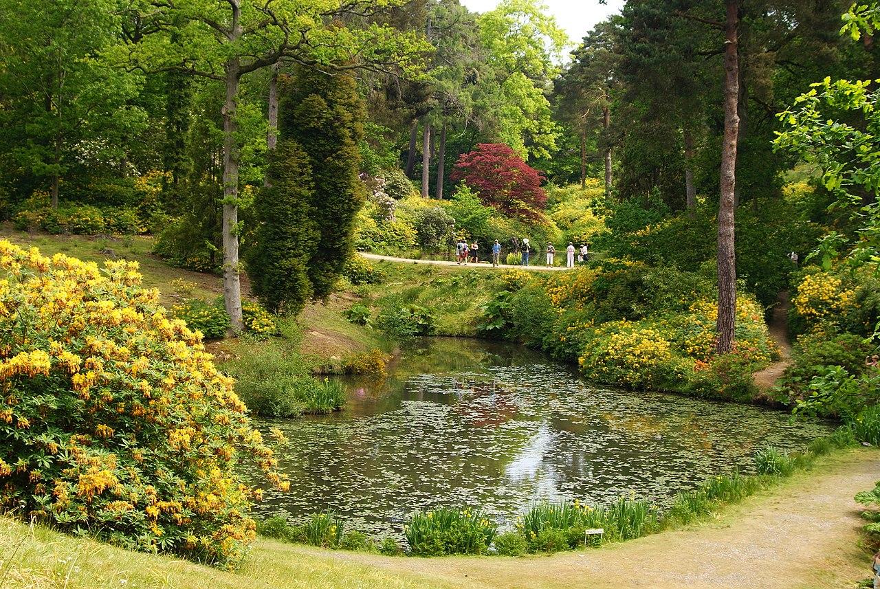 1280px-Leonardslee_Gardens,_Sussex_(5)_(geograph_1906444).jpg