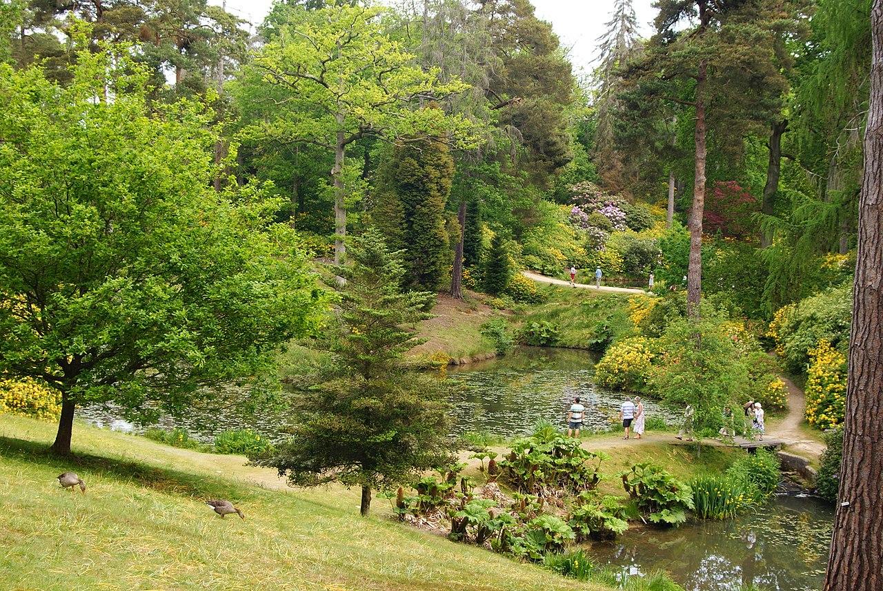1280px-Leonardslee_Gardens,_Sussex_(6)_(geograph_1906457).jpg