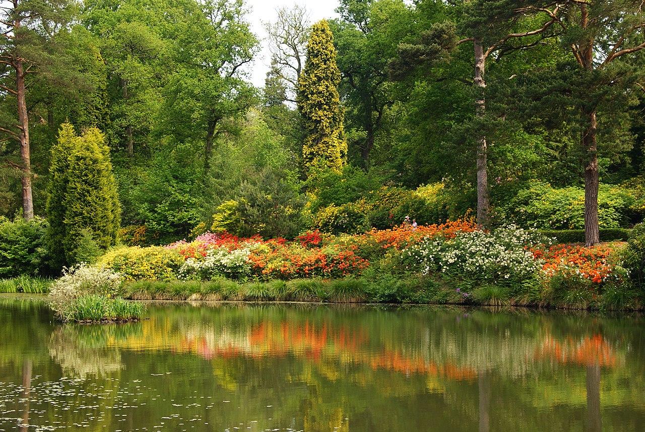 1280px-Leonardslee_Gardens,_Sussex_(8)_(geograph_1906483).jpg