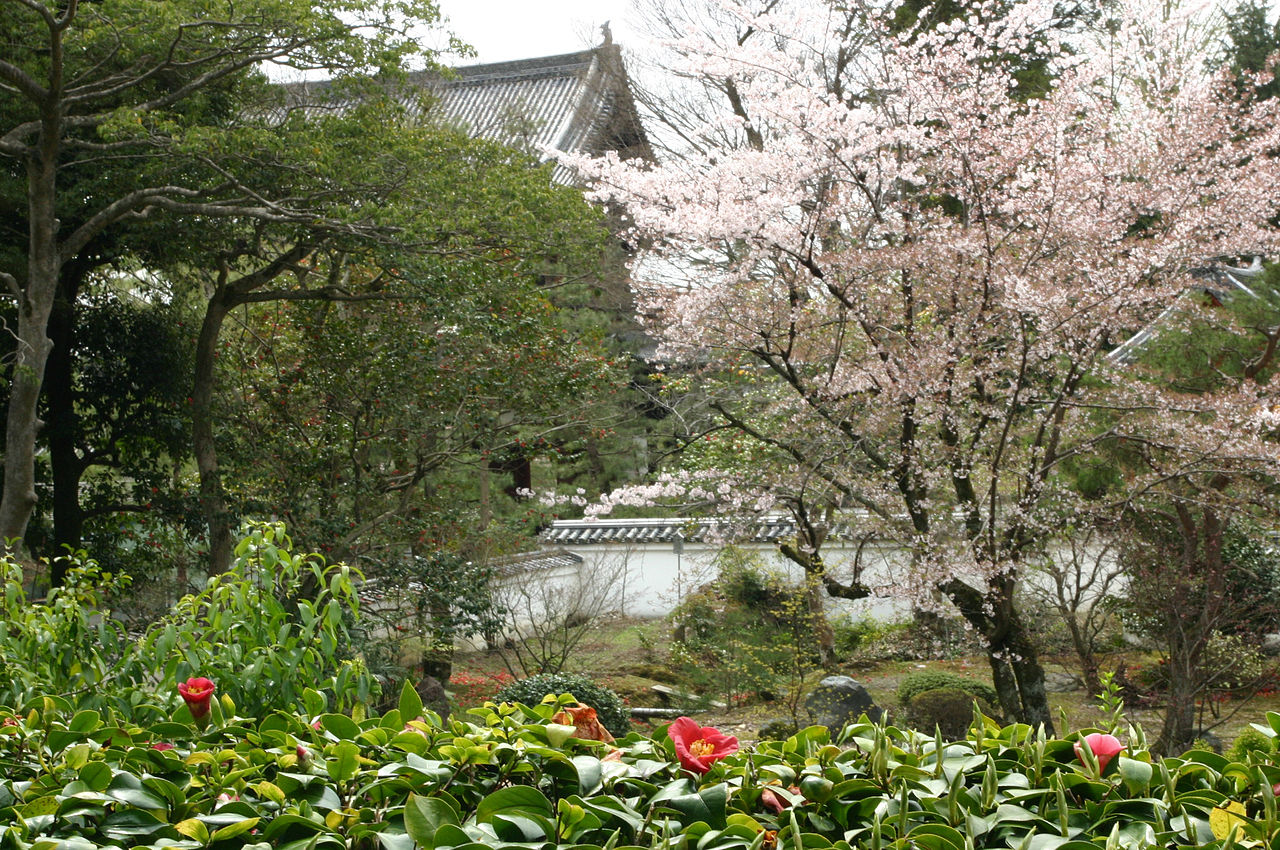 1280px-Manpuku_temple_cherry.jpg