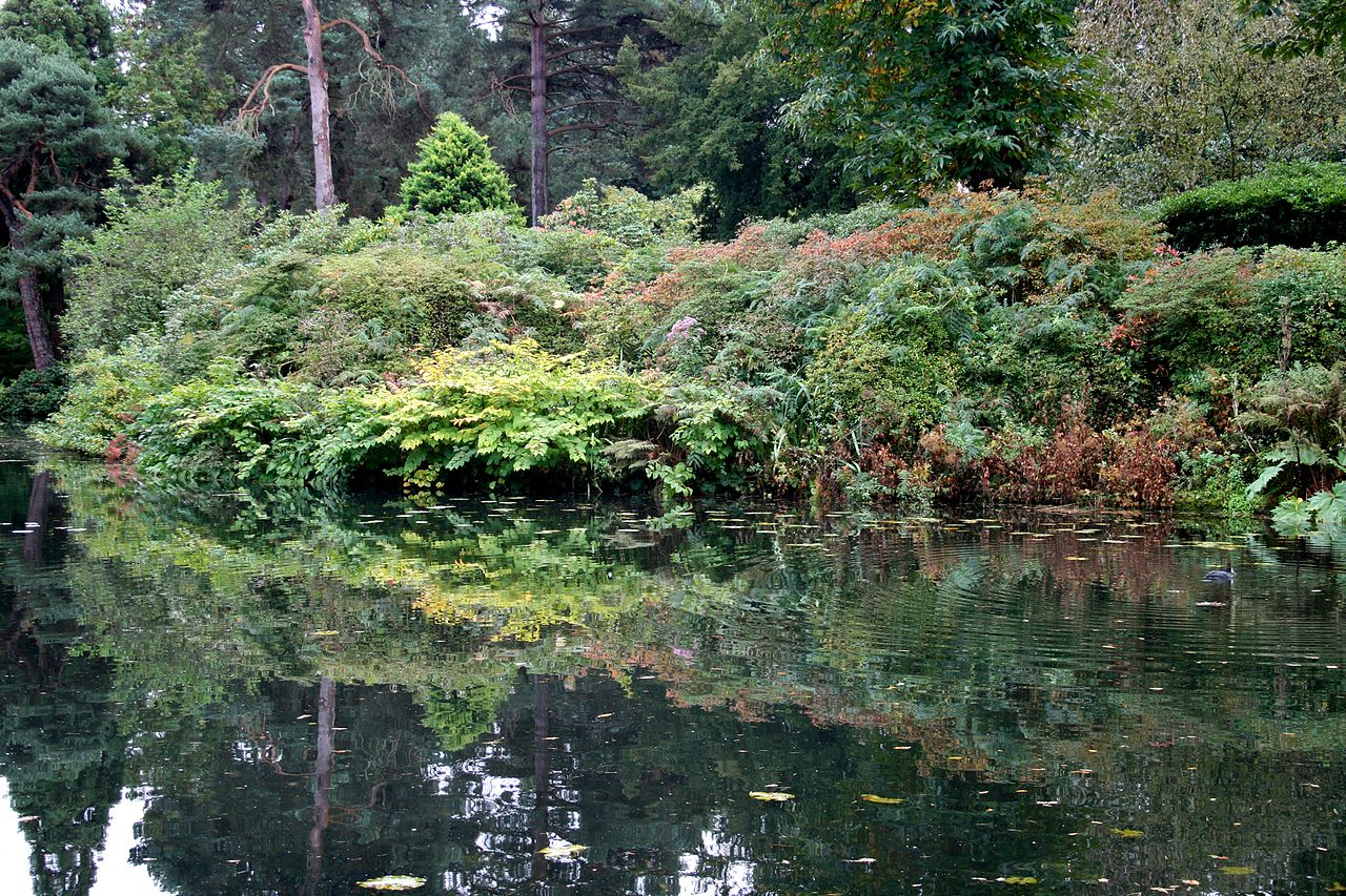 1280px-Pond_at_Tatton_Park_1.jpg